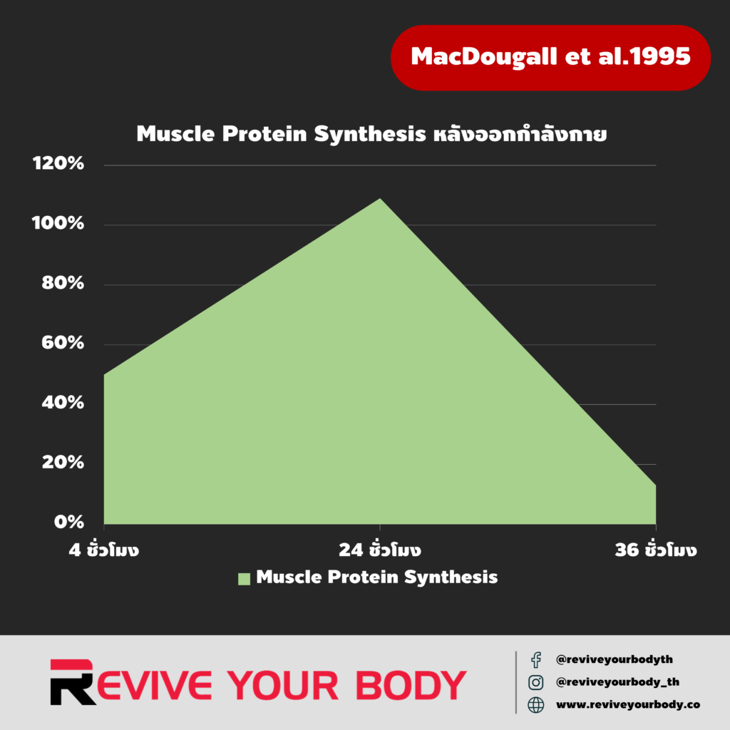 post-workout muscle protein synthesis: MacDougall et al.1995
