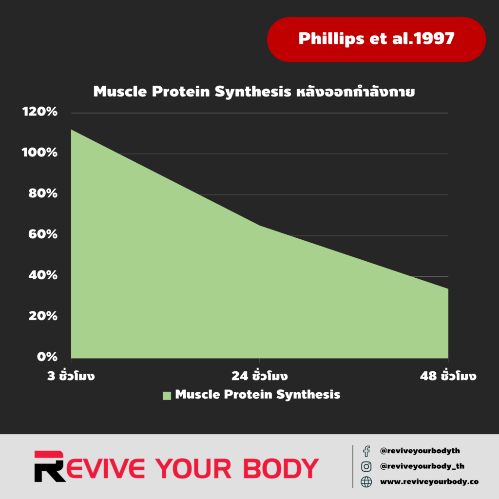 post-workout muscle protein synthesis: Phillips et al.1997