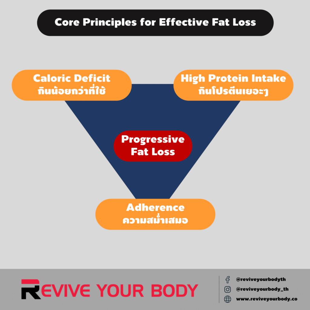 core principles for effective fat loss