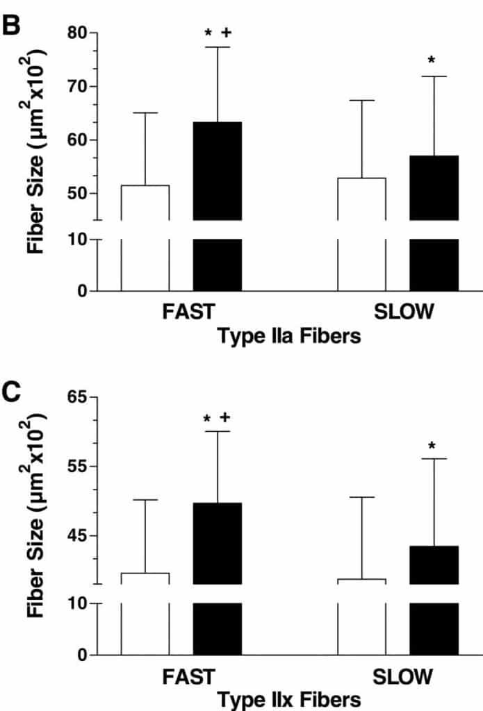 fast rep causes more growth in muscle fiber type 2